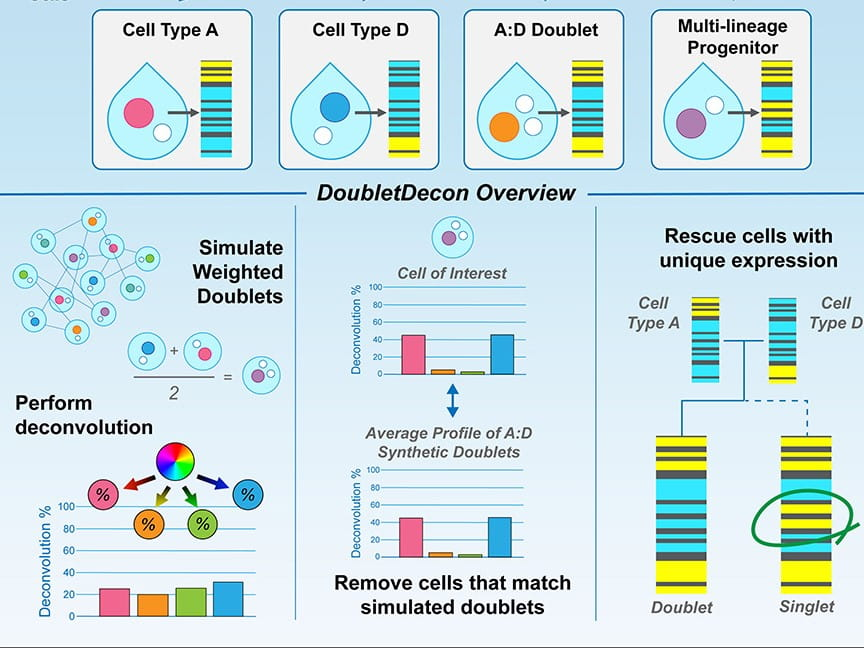 New Tool Improves Outcomes of Single-Cell Research