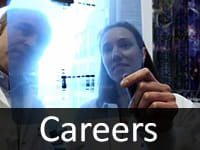 Learn about careers and alumni of the Molecular and Developmental Biology Graduate Program.