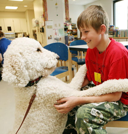 Dog Visitation Program at Cincinnati Children's.
