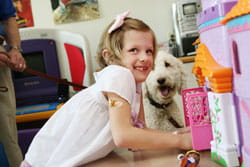 A photo of volunteer dog named Abby with patient at Cincinnati Children's.