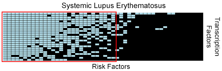 Systemic Lupus Erythematosus.