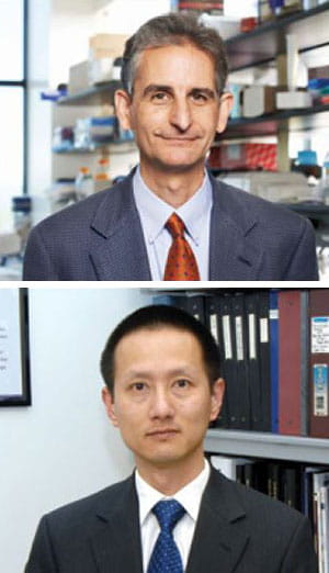 Above: Louis Muglia, MD, PhD, Below: Ge Zhang, MD, PhD.