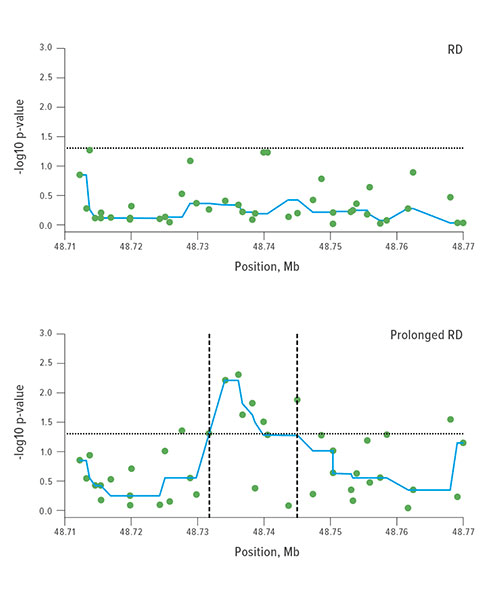 Fig A: Researchers plotted the −log10 (p-values) of the single SNP association tested in additive models. The dotted refer-ence lines show the −log10 (p-value of 0.05) level. Several ABCC3 SNPs between the vertical lines show significant associa-tion between prolonged post-operative stay and respiratory depression (RD). The p-values were smoothed using a running median represented by the blue line in both plots. The Y axis shows the −log10 p-values and the X axis shows the chromo-somal positions of the ABCC3 polymorphisms (SNPs) on Chromosome 17.