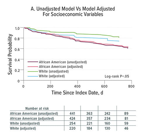 Fig A:  This chart depicts survival probabilities according to adjusted and unadjusted models of racial diversity