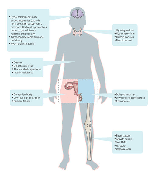 Fig A:  This illustration indicates the wide variety of disorders that pediatric cancer survivors can face as they reach adult-hood. Some emerge during treatment, others may take years to appear. Overall, 90 percent of cancer survivors will develop some form of chronic health condition by age 45.