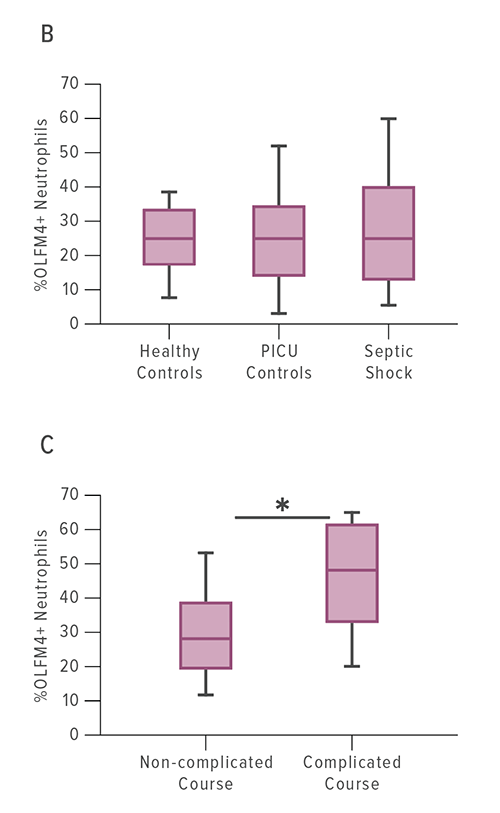 The percentage of OLFM4+ neutrophils is not significantly different between healthy controls, intensive care controls, or patients with septic shock (B). When comparing just patients with septic shock, those with a complicated course had a higher percentage OLFM4+ cells when compared with non-complicated course (C).