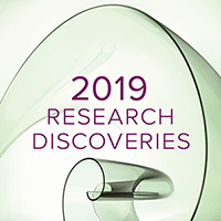 An image for the 2019 Research Annual Report.
