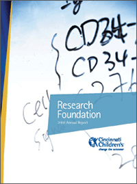 An image of the 2008 Research Annual Report cover.