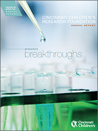 An image of the 2012 Research Annual Report cover.