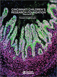 An image of the 2013 Research Annual Report cover.