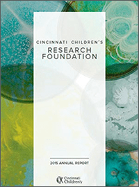 An image of the 2015 Research Annual Report cover.