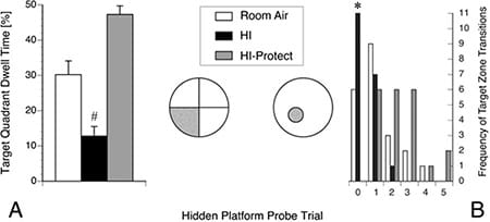 Performance in hidden platform probe trials in the Morris water maze was impaired in adult mice following neonatal brain ischemia, compared with littermates treated with a combined protective strategy. Bars represent mean dwell times and standard errors in the quadrant of the hidden platform after its removal (A), a measure of spatial memory retention, and the number of transitions across the previous platform location (B), a measure of spatial memory accuracy. All animals underwent right carotid artery ligation on postnatal day 10 and exposure to 10% oxygen for 60 min, without (HI, black bars) or with peri-ischemic hypothermia and sevoflurane (HI-Protect, gray bars), except for Room Air animals (white bars), which only underwent carotid artery ligation without hypoxia.