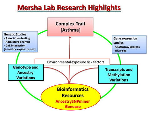 A chart illustrating Mersha Lab's research highlights.