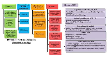 Our research strategy - click to enlarge.