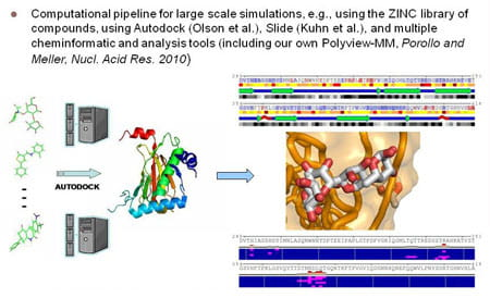 Computational pipeline for large scale simulations, e.g., using the the ZINC library of compounds, using Autodoct (Olson et al.), Slide (Kuhn et al.), and multiple cheminformatic and analysis tools (including our own Polyview-MM, Porollo and Meller, Nucl. Acid Res. 2010).