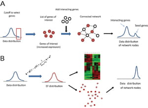 Novel algorithms for extraction of network models from multidimensional genome-scale data.
