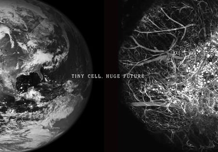 Tiny cell, huge future image.