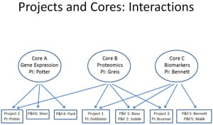 Projects and Cores: Interactions