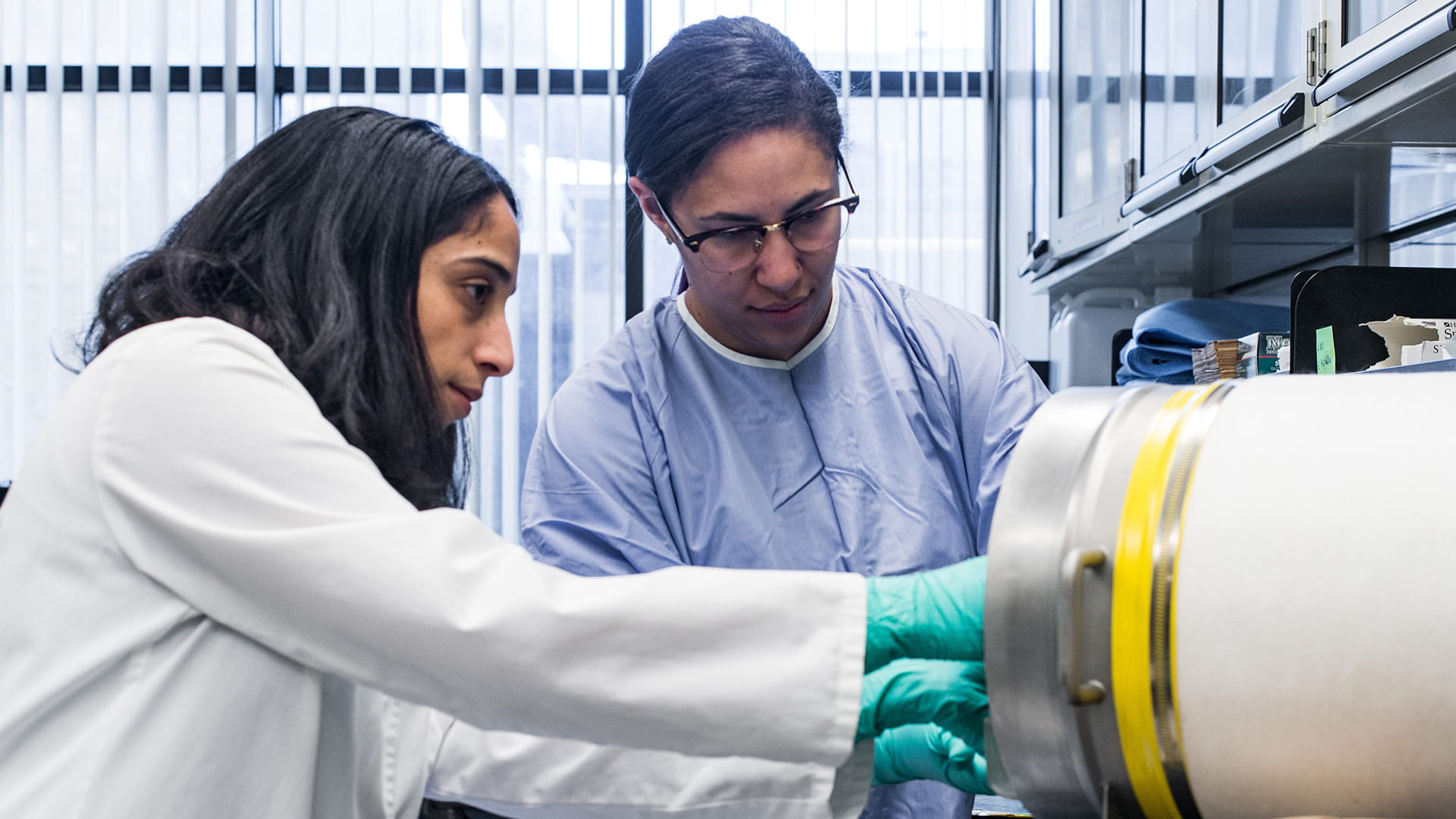 An image of Theresa Alenghat, VMD, PhD, and Jordan Whitt in the lab.