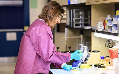 The Diagnostic Immunology Laboratory (DIL) in the Cancer & Blood Diseases Institute at Cincinnati Children's.