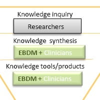Evidence implementation process for REACH.