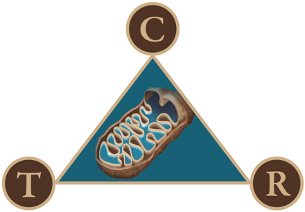 mitochondrial-triangle-440x